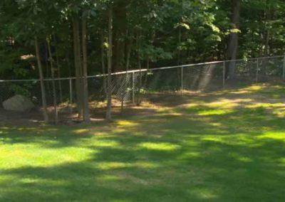 backyard chain link fence